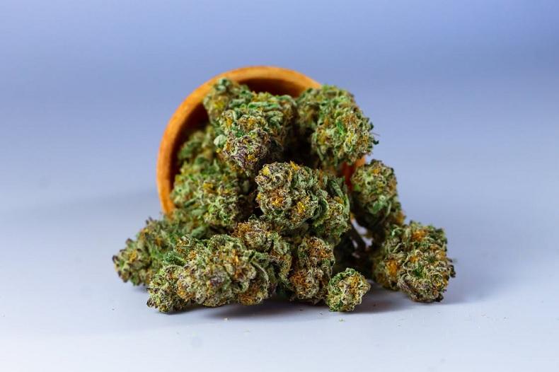 Cannabis auf Reisen